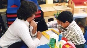 Pedagojik Danışmanlık Hizmetleri